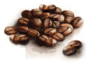 coffee beans watercolor art, culinary Caryn dahm