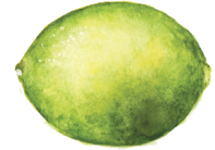 lime watercolor art