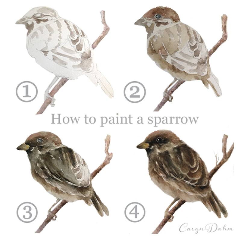 How to paint a sparrow bird watercolor tutorial