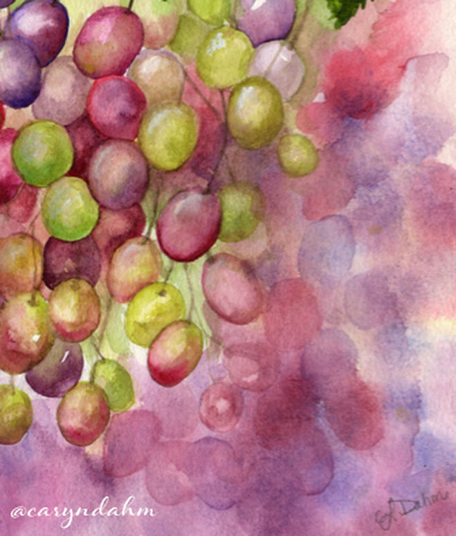 close up of grapes on the vine watercolor
